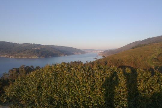 La ría de Ferrol