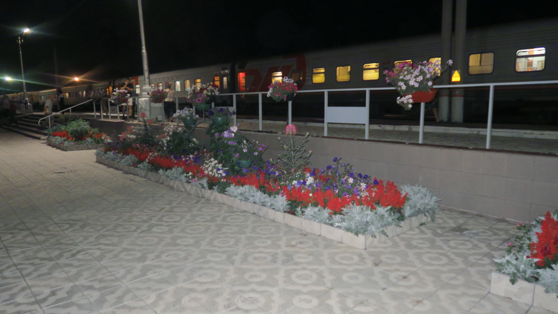 Flores en la estación de Чернышевск (Chernyshevsk).