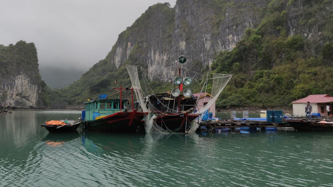 Aldea flotante Cua van en Vịnh Hạ Long