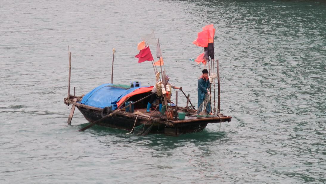 Pescadores de Vịnh Hạ Long.