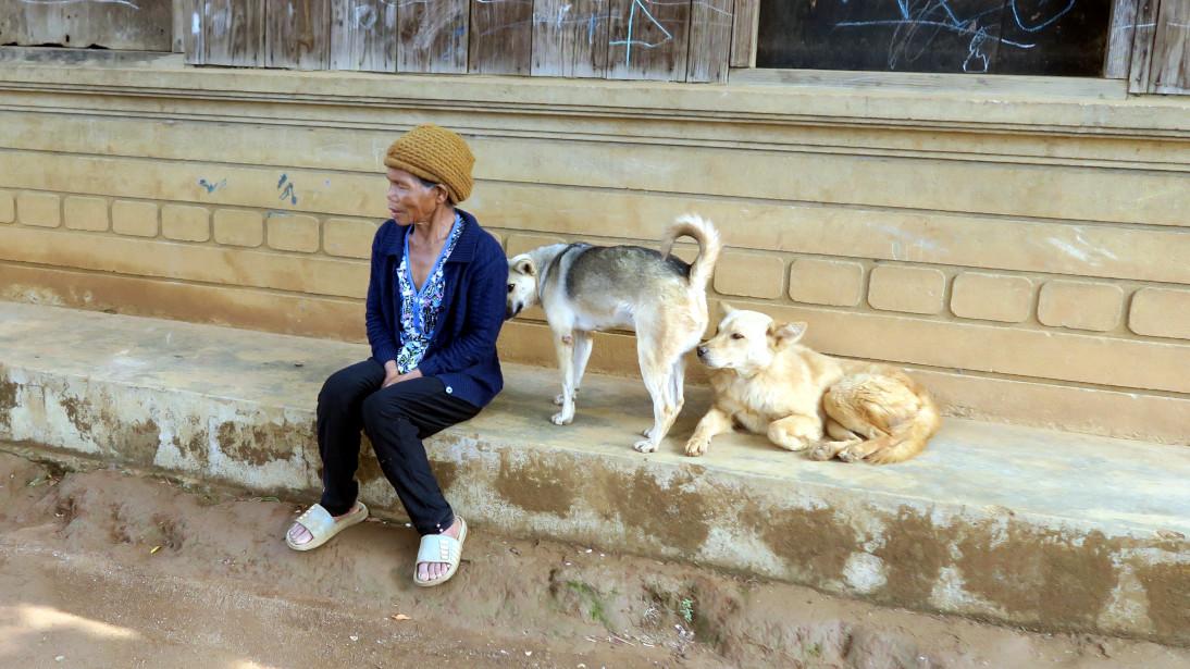 Señora y los perros a las afueras Đà Lạt.
