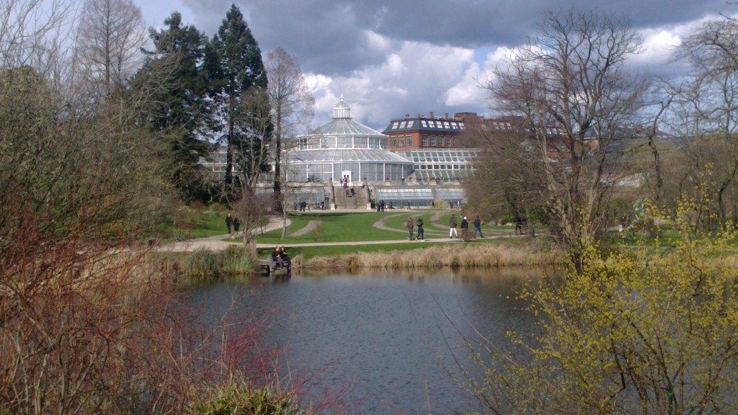 Botanisk have.